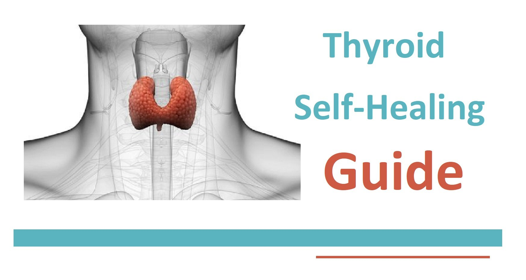 Hypothyroidism Self Healing Guide.