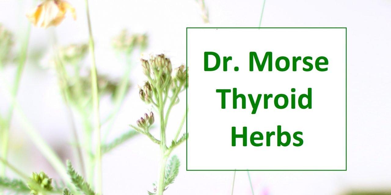 Discounted Dr. Morse Herbs & Glandulars